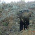 image bats_cave_01-jpg