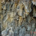 image bats_cave_06-jpg