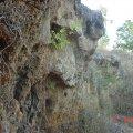 image bats_cave_07-jpg