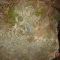 image bats_cave_10-jpg