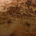 image bats_cave_14-jpg