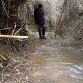image flooding_07-jpg
