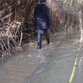 image flooding_14-jpg