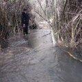 image flooding_15-jpg