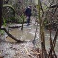 image flooding_22-jpg