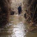 image flooding_27-jpg