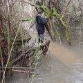 image flooding_34-jpg