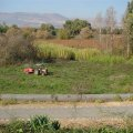image planting2006_18-jpg