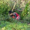 image planting2006_39-jpg