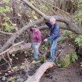 image planting2006_42-jpg