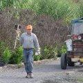 image planting2006_48-jpg