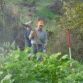 image planting2006_50-jpg